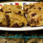 gluten free egg free oatmeal chocolate chip bars