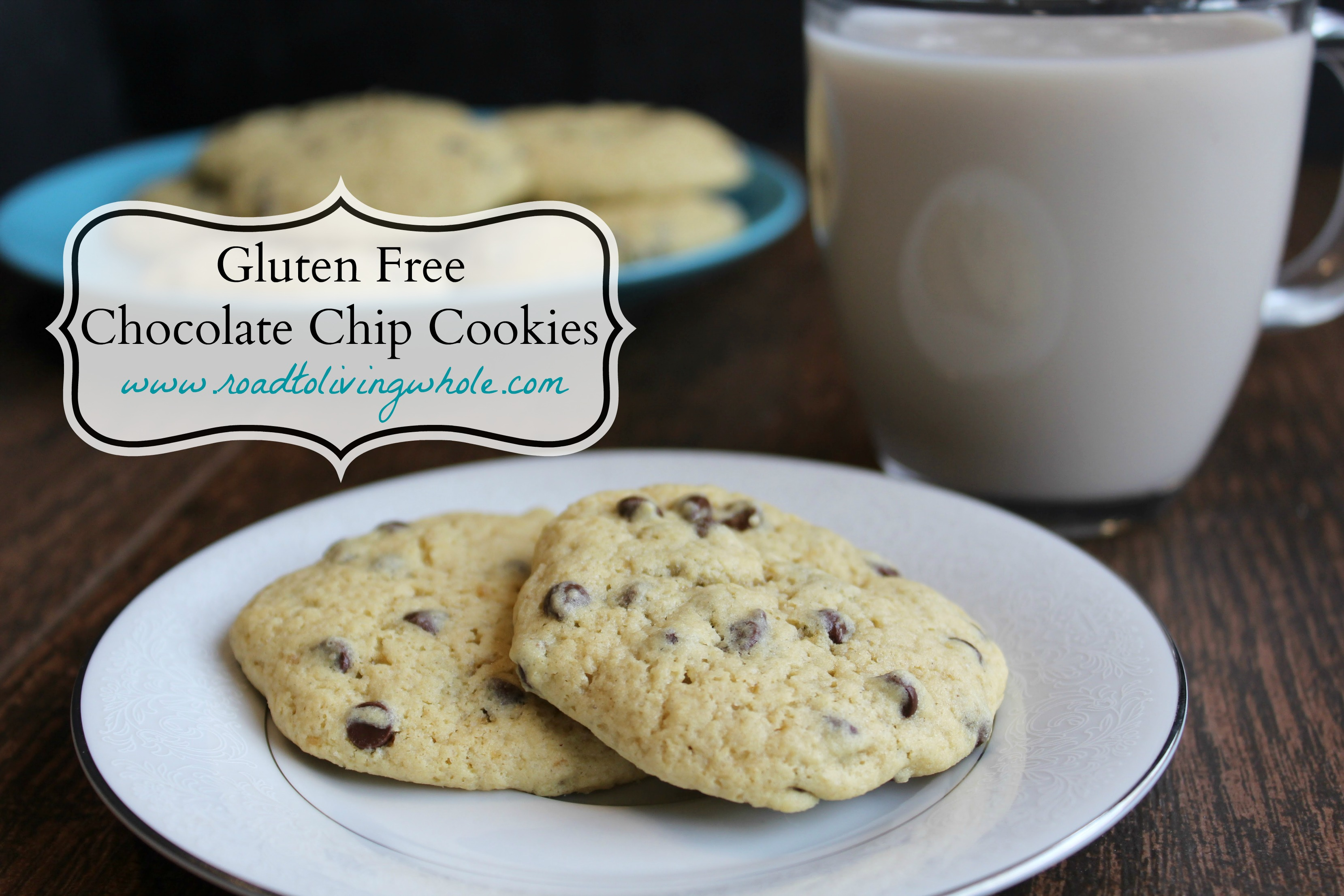 Classic Gluten Free Chocolate Chip Cookies