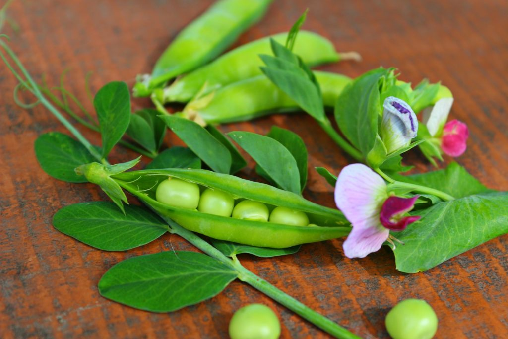 peas for skin