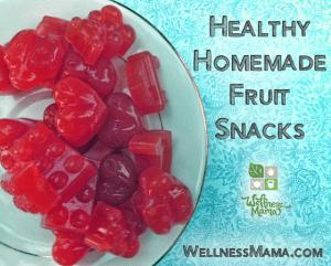 Healthy-Homemade-Fruit-Snacks-Recipe
