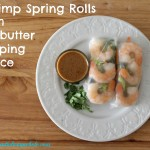 gluten free shrimp spring rolls with a sunbutter dipping sauce