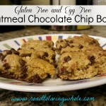 gluten free and egg free oatmeal chocolate chip bars