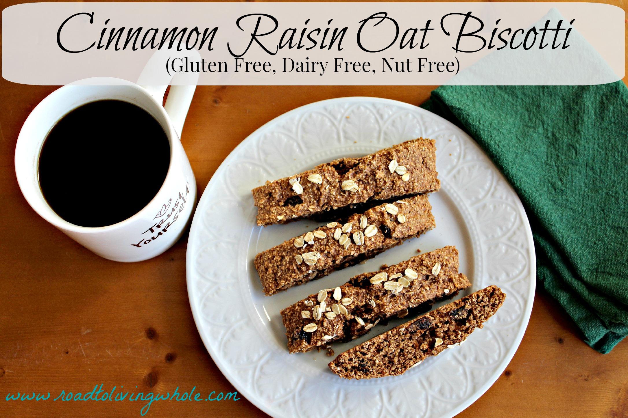 gluten free cinnamon raisin oat biscotti