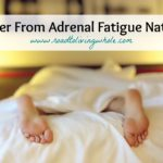 Adrenal Fatigue: What It Is and How to Recover Naturally