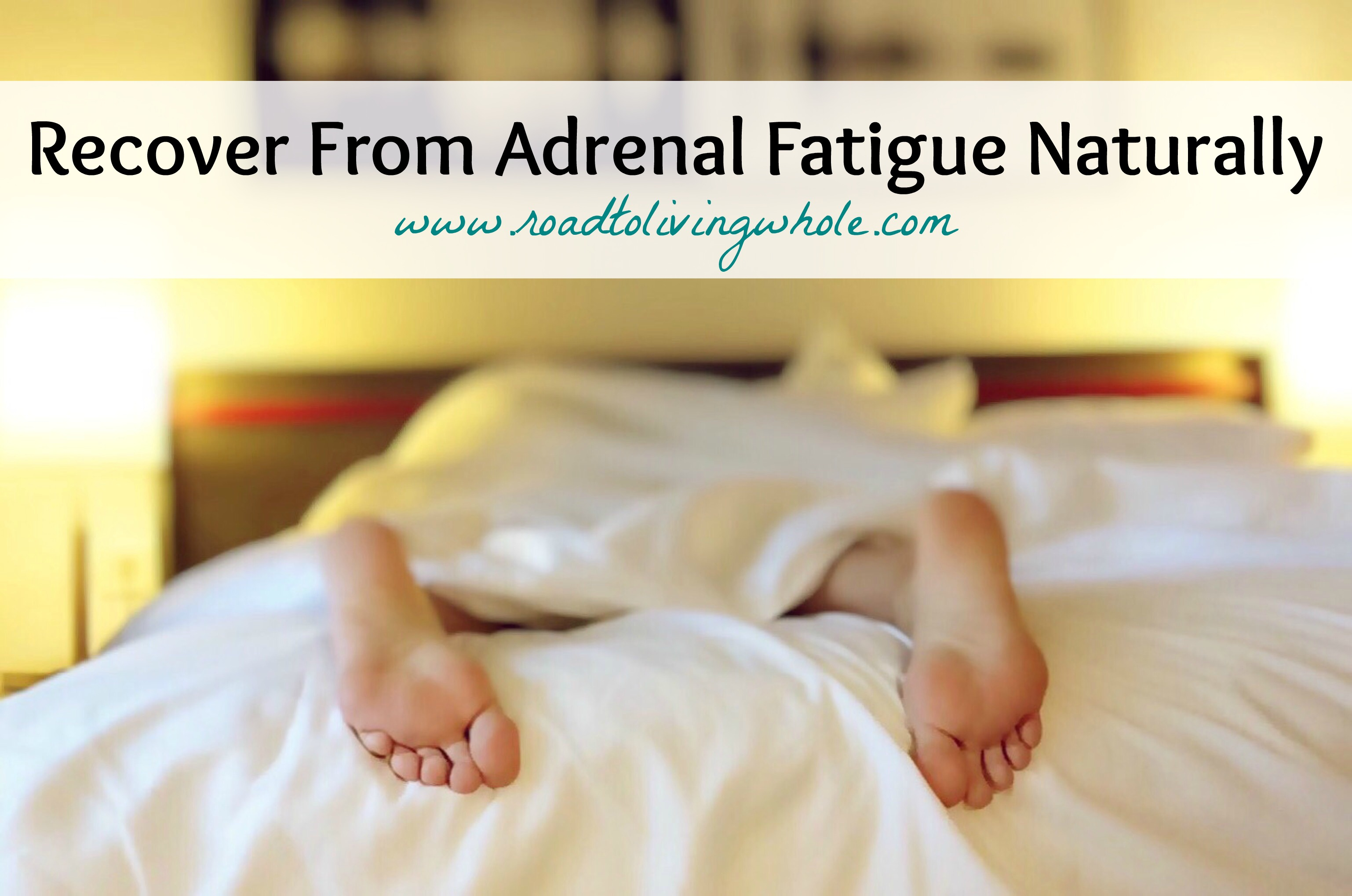 recover adrenal fatigue