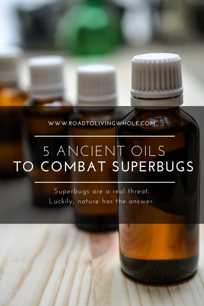 ancient oils superbugs