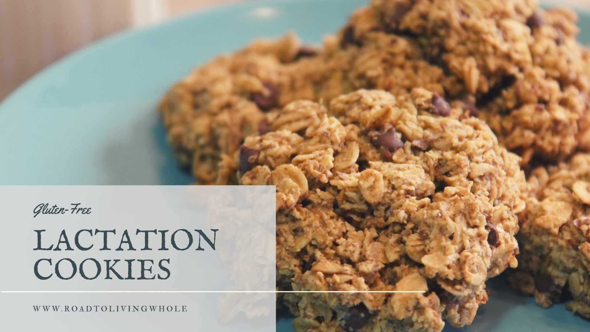 gluten free lactation cookies